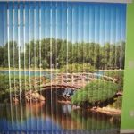 Digitally Printed Blinds in Manchester